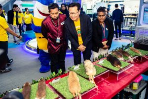 Exhibits on the Rodent Exhibition 2020