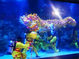 Divers performing the Underwater Dragon Dance