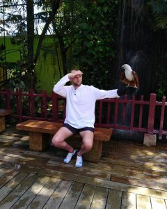 An eagle perched on a man's arms