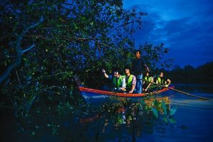 A boat cruises through the river witness fireflies
