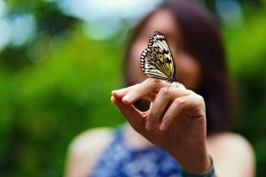 Butterfly perched on woman's hand at Entopia