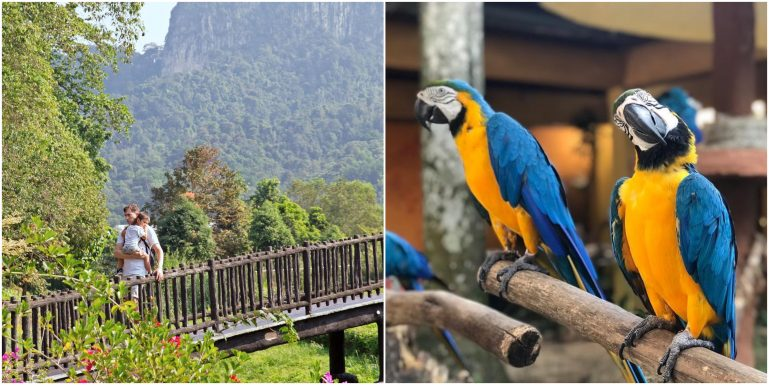 These Animal Parks in Malaysia have REOPENED and are ready for your 2021 weekend plans!
